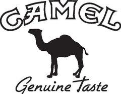 logo_camel-001.jpg